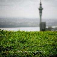 Auckland_Poi_Room_20130913_124