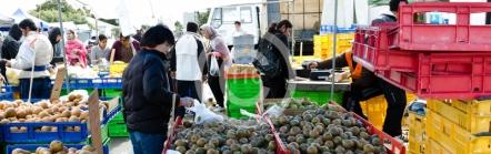 BH_Anondl_Market_20110820_10