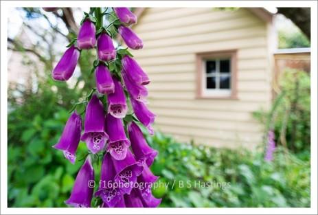 f16_NZHPT_HW_20131010_16