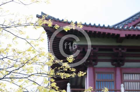 f16_Redoubt_Lifestyle-49