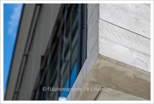 f16_Jasmax_Carmel_Nov_13-248q
