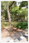 f16photography_S-S-Cemetery-10