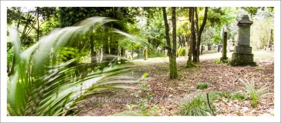 f16photography_S-S-Cemetery-16