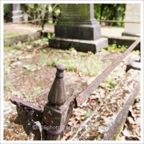 f16photography_S-S-Cemetery-17