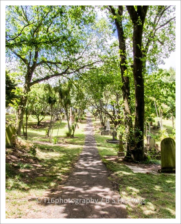 f16photography_S-S-Cemetery-18