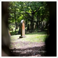 f16photography_S-S-Cemetery-3