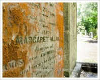 f16photography_S-S-Cemetery-9