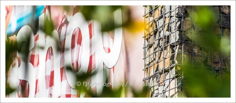 f16photography_TBG_ASC_Web-15